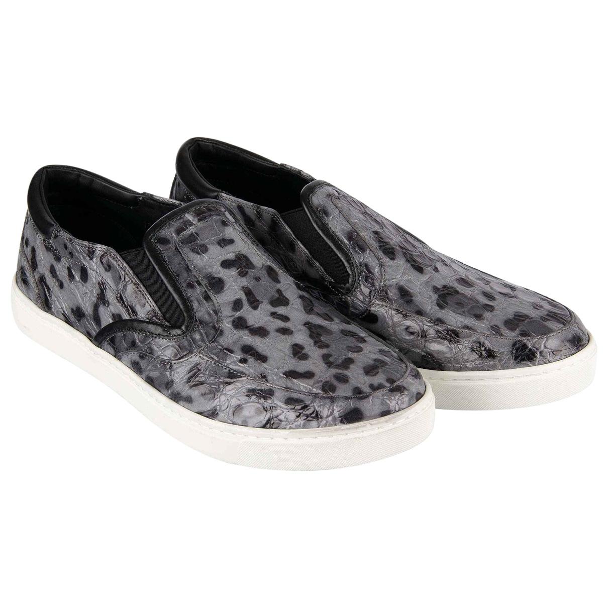 Dolce & Gabbana \N Grey Crocodile Trainers for Men 45 EU