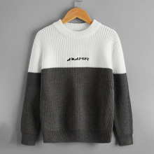 Boys Letter Embroidered Colorblock Sweater