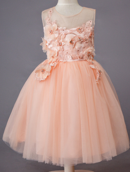 Milanoo Boda vestido de niña de flores de encaje de tul sin mangas princesa Kids Dinner Party Vestidos
