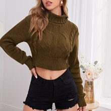 Turtleneck Cable Knit Crop Sweater