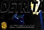 Detrita Battlegrounds Steam CD Key