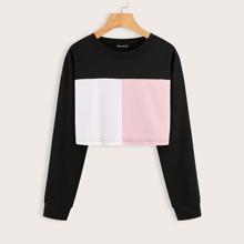 Cut And Sew Drop Shoulder Sweatshirt