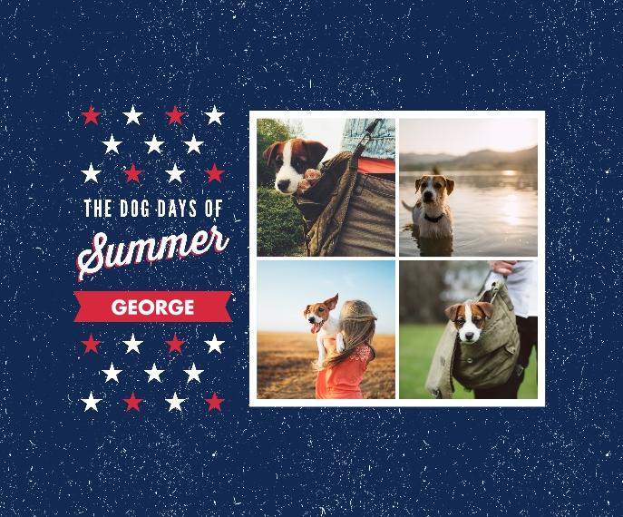 Pet Canvas Print, 20x24, Home Décor -Patriotic Pet