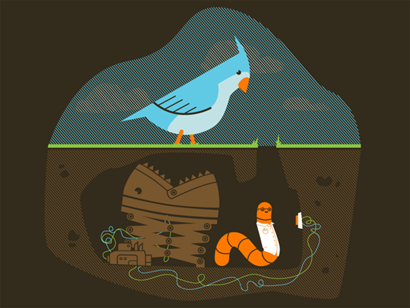 The Early Worm Gets The Bird T Shirt