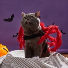 1 Stueck Kostuem mit Halloween Spinne Design fuer Katzen