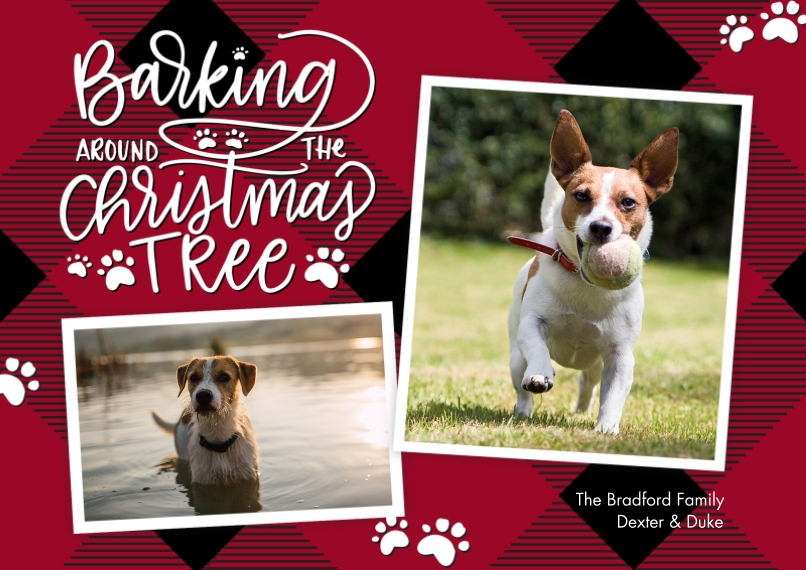 Christmas Photo Cards 5x7 Cards, Premium Cardstock 120lb with Scalloped Corners, Card & Stationery -Christmas Plaid Paw Prints by Tumbalina