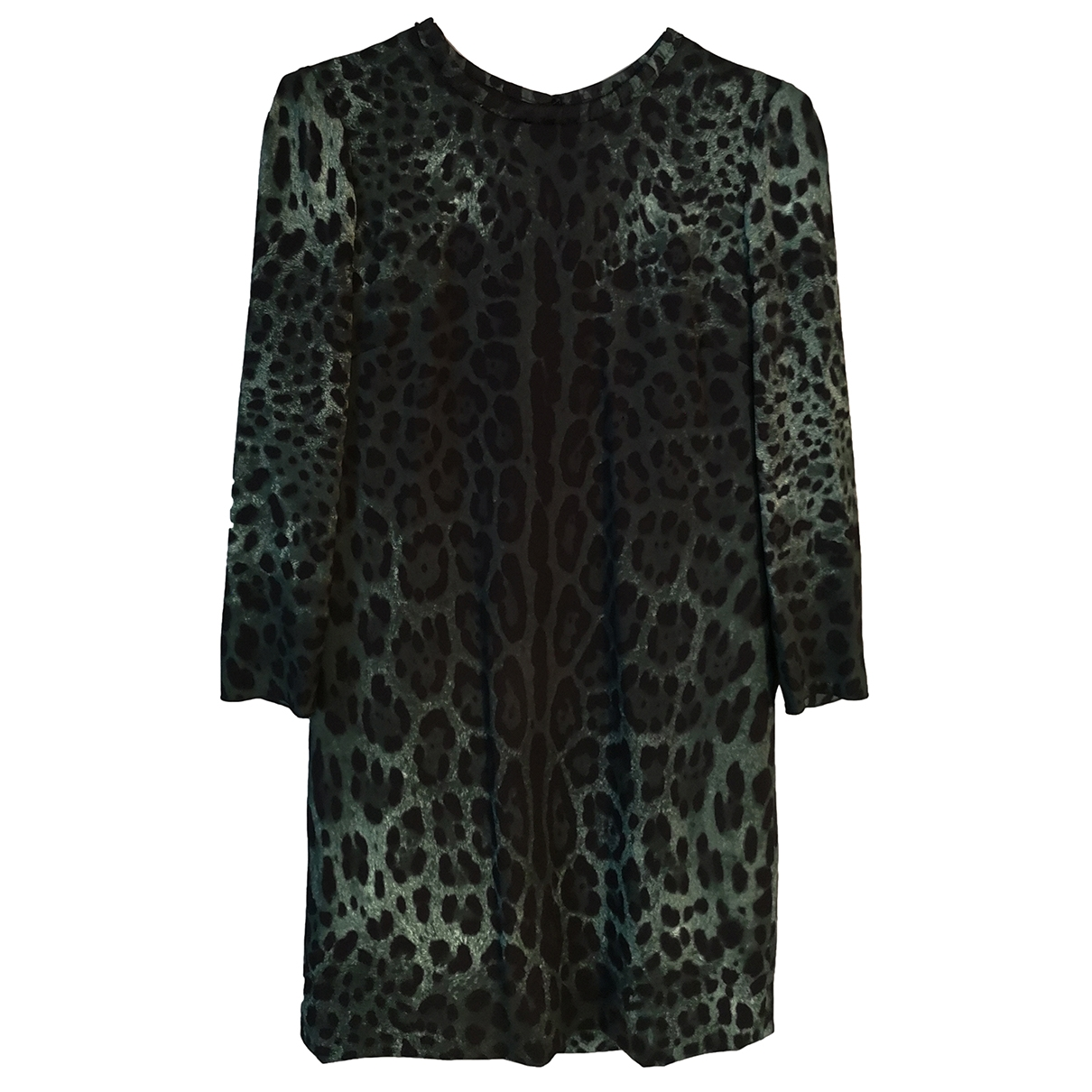 Dolce & Gabbana \N Green Silk dress for Women 38 IT