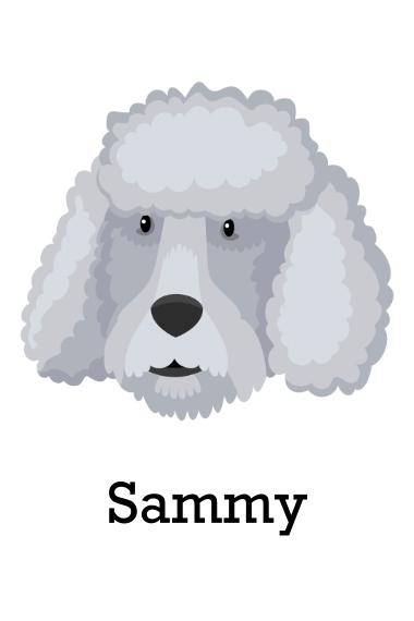 Pet 20x30 Poster, Home Décor -Poodle 3