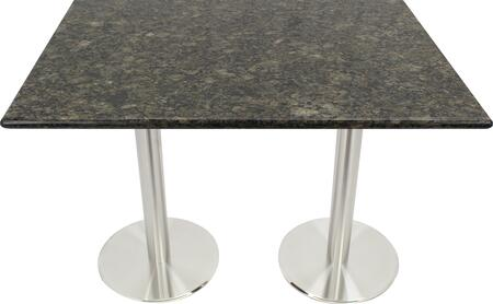 G203 30X42-SS14-17D 30x42 Uba Tuba Granite Tabletop with 17