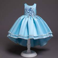 Girls Appliques Lace Insert Bodice Gown Dress