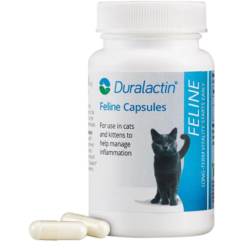 Duralactin Feline 200 mg (60 capsules)