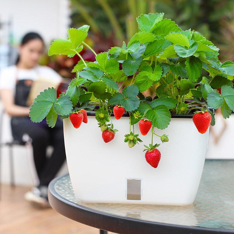 Large Flower Pot Flower Vegetable Balcony Vegetable Pot Plastic Self-absorbent Cotton Rope Vegetable Pot