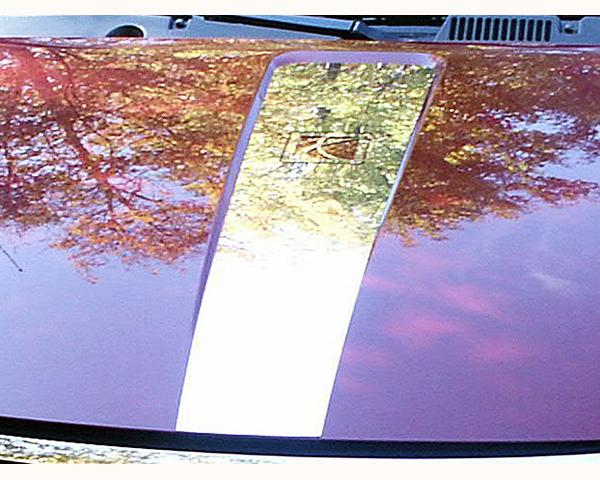 Quality Automotive Accessories Hood Accent Trim Saturn ION 2006