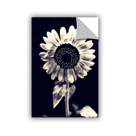Brushstone Black and White Sunflower Removable Wall Decal, One Size , Black