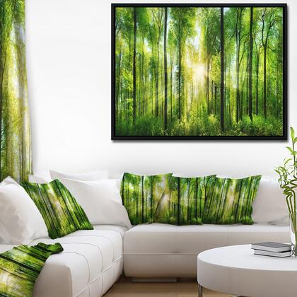 FL7211-42-32-FLB Forest With Rays Of Sun Panorama - Landscape Art Print Framed Canvas -
