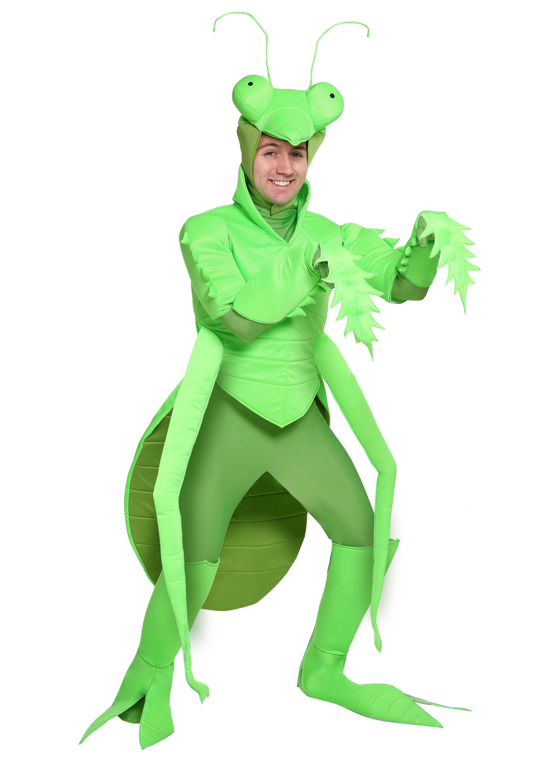 Praying Mantis Mens Costume