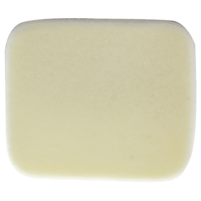 All Day Luminous Powder Foundation Sponge