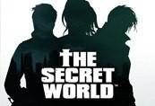 The Secret World Temple Cat Pet CD Key