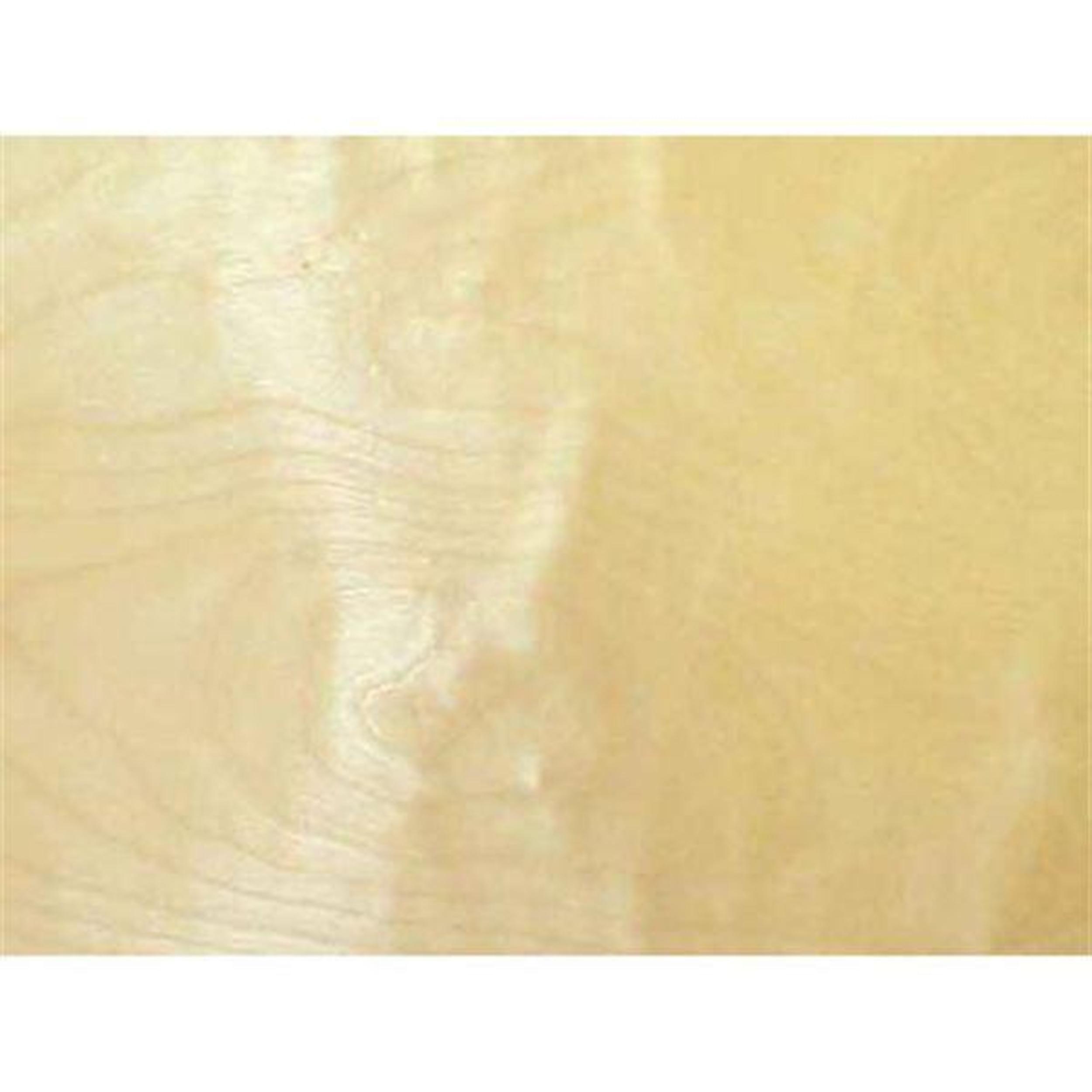 Birch, White 2