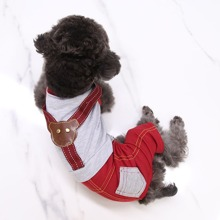 Hund Jumpsuit mit Farbblock