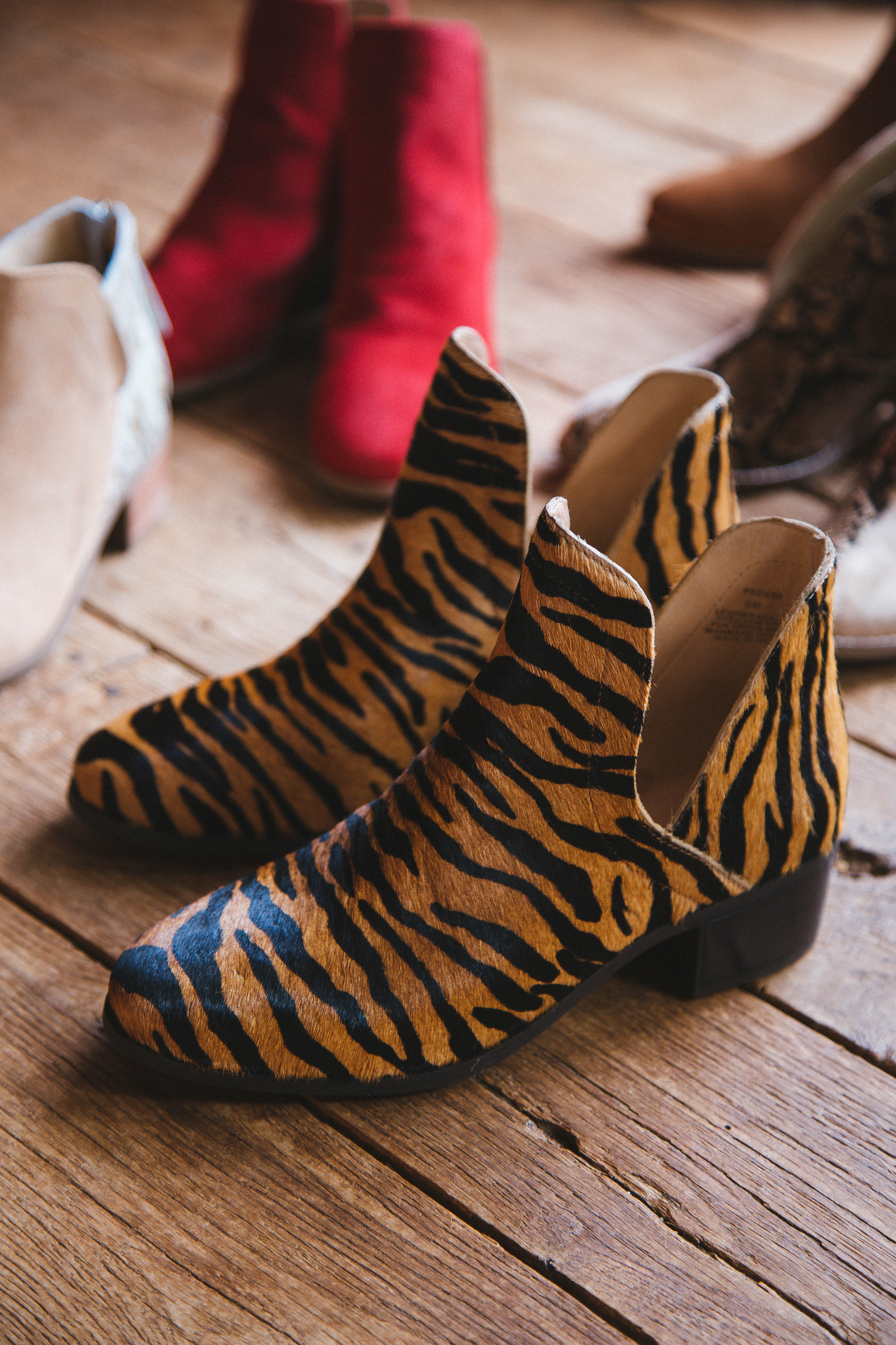 Pronto Ankle Boot Tiger | Coconuts by Matisse