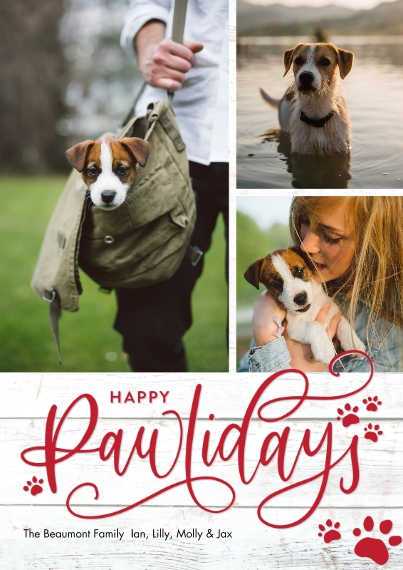 Holiday Photo Cards 5x7 Cards, Premium Cardstock 120lb, Card & Stationery -Holiday Happy Pawlidays Prints by Tumbalina