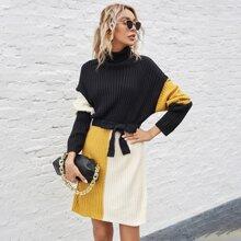 Turtleneck Color Block Belted Sweater Dress