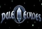 Pale Echoes Steam CD Key