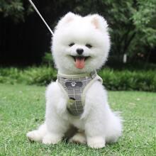 1 Stueck Hundeweste mit Karo Muster und 1 Stueck Leine