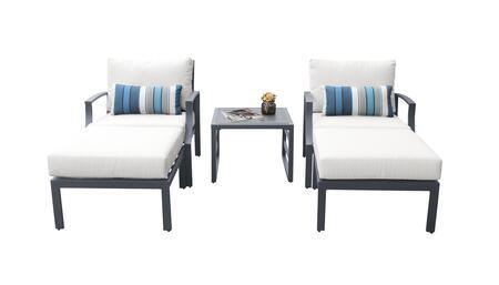 Lexington LEXINGTON-05b-WHITE 5-Piece Aluminum Patio Set 05b with 2 Club Chairs  1 End Table and 2 Ottomans - Ash and White