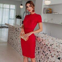 Rot Durchsichtige Spitze Einfarbig Elegant Kleider