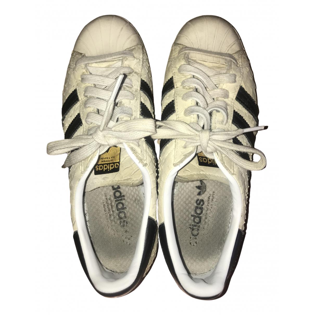 Adidas Superstar Sneakers in  Beige Veloursleder