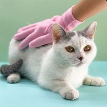 1 pieza guante de remover pelo de gato