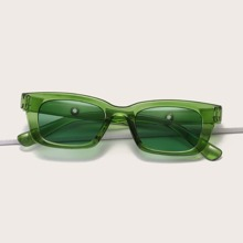 Acrylic Frame Cat Eye Sunglasses