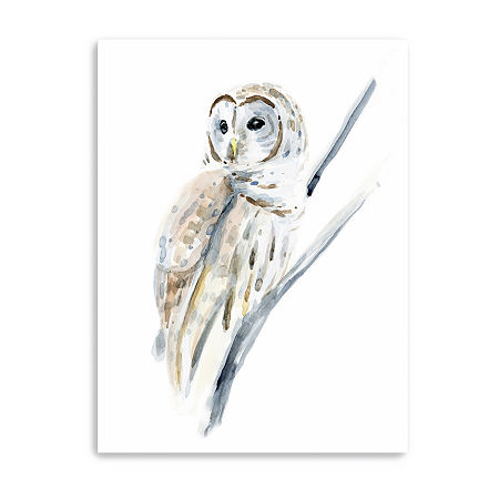 Arctic Owl I Giclee Canvas Art, One Size , Brown