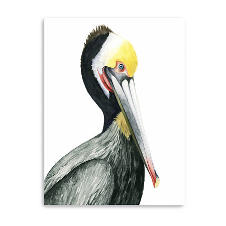 Watercolor Pelican I Giclee Canvas Art, One Size , Multiple Colors