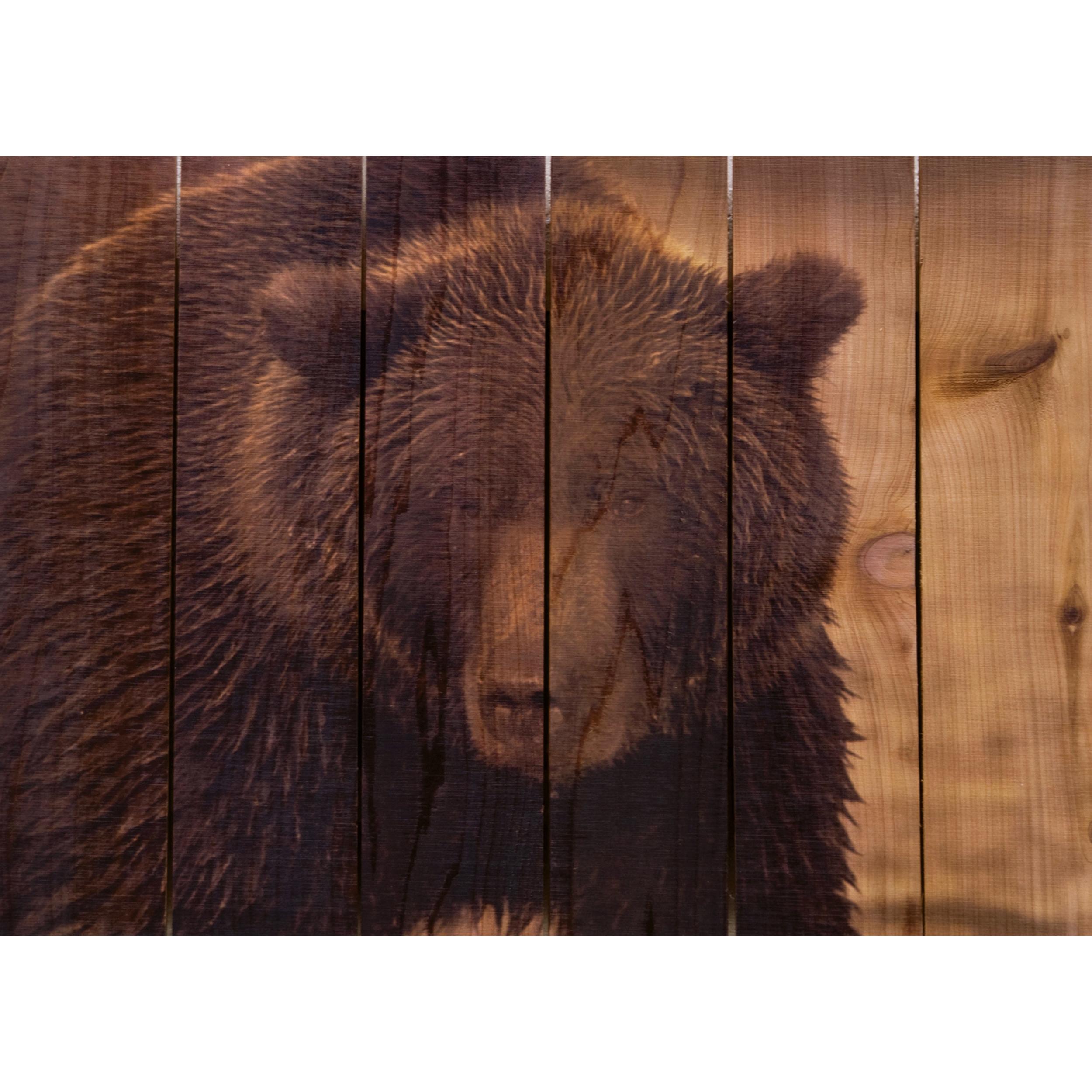 Daydream Gizaun Cedar Wall Art, Big Bear, 22.5