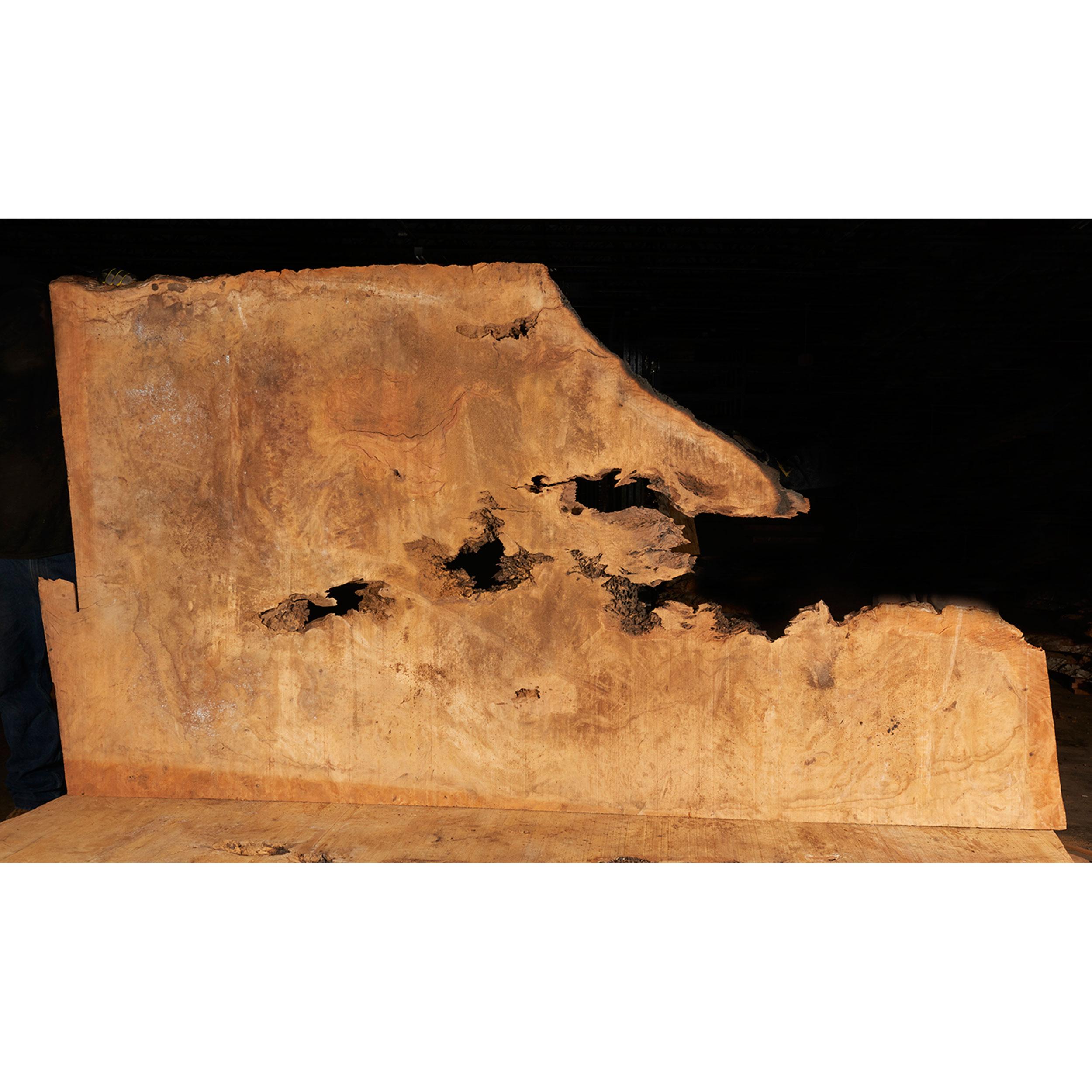 Pequia (Caryocar Villosum) Slab 75