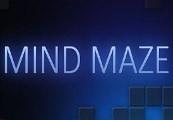 Mind Maze Steam CD Key