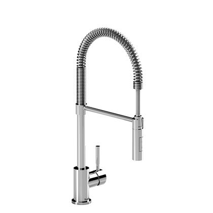 BI201C-10 Kitchen Faucet with Spray 1.0 GPM  in