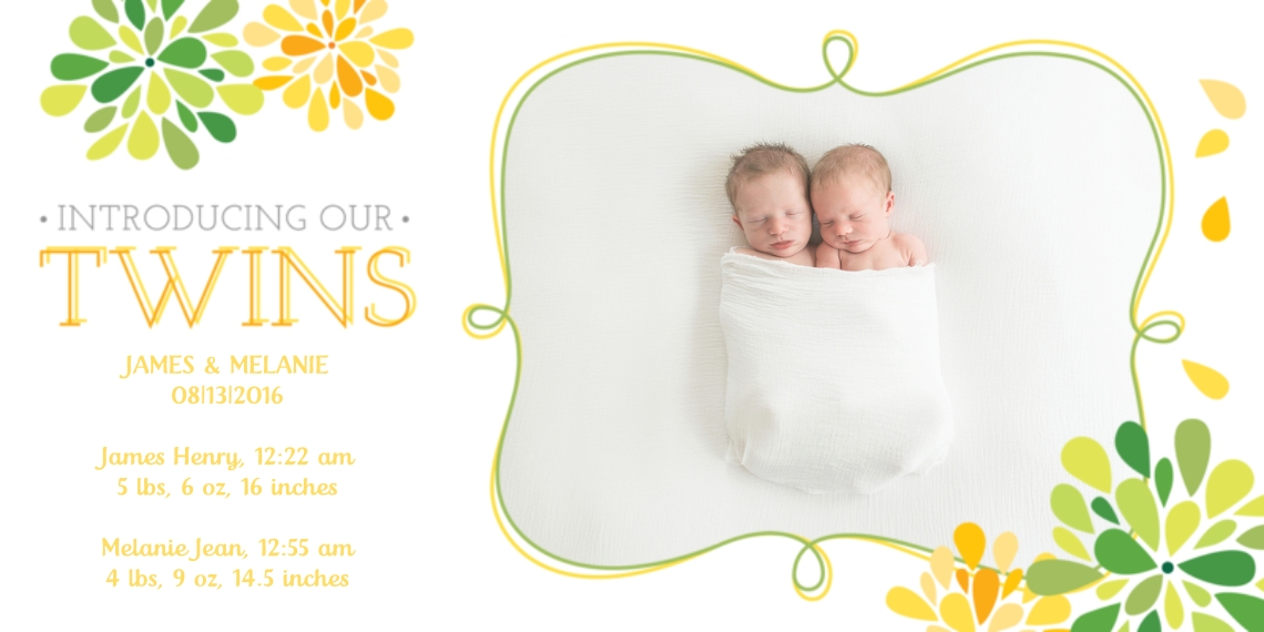 Newborn Flat Matte Photo Paper Cards with Envelopes, 4x8, Card & Stationery -Twins Baby Announcement