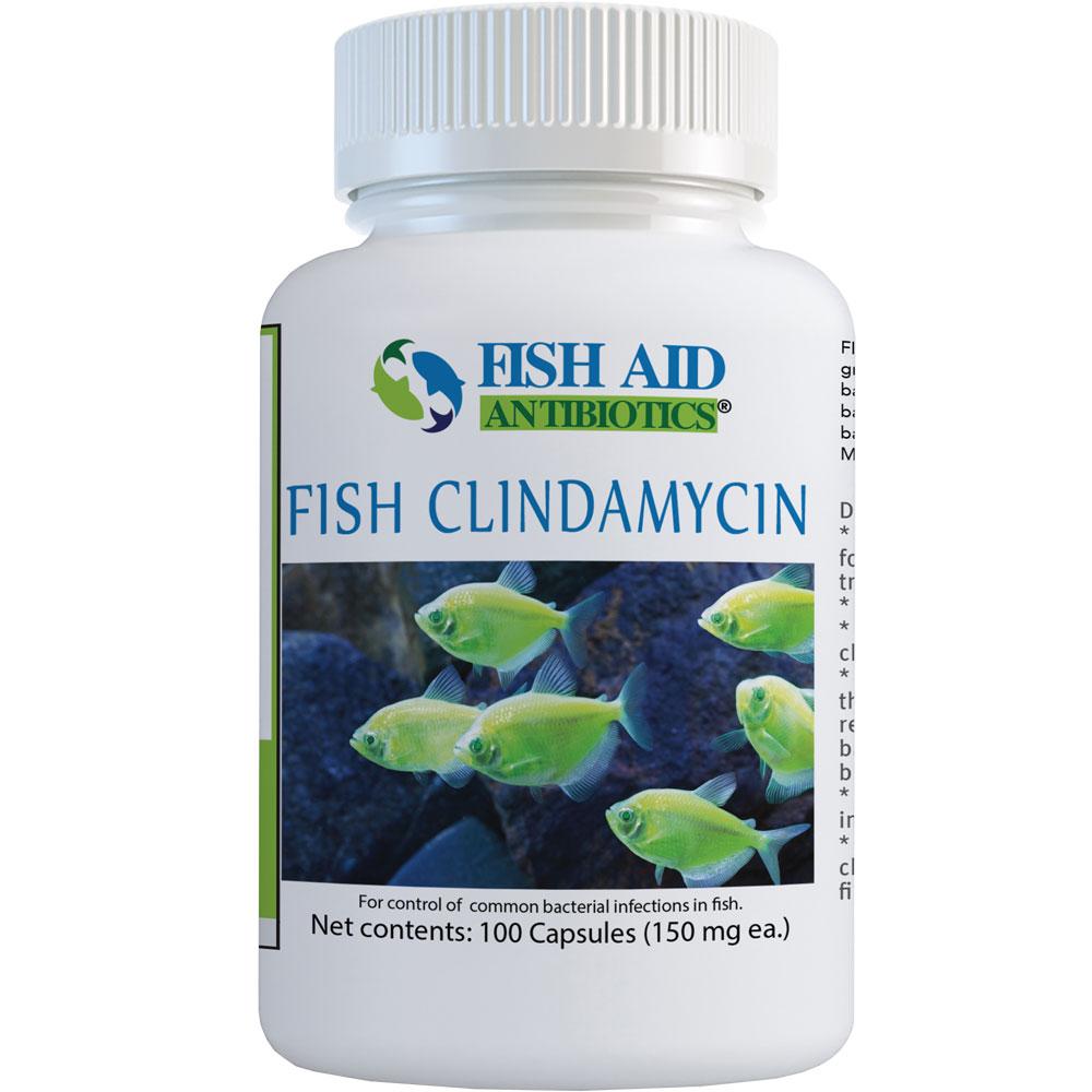 Clindamycin Capsules 150mg (100 Capsules)