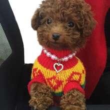 1 Stueck Hundehalsband mit Herzen Anhaenger