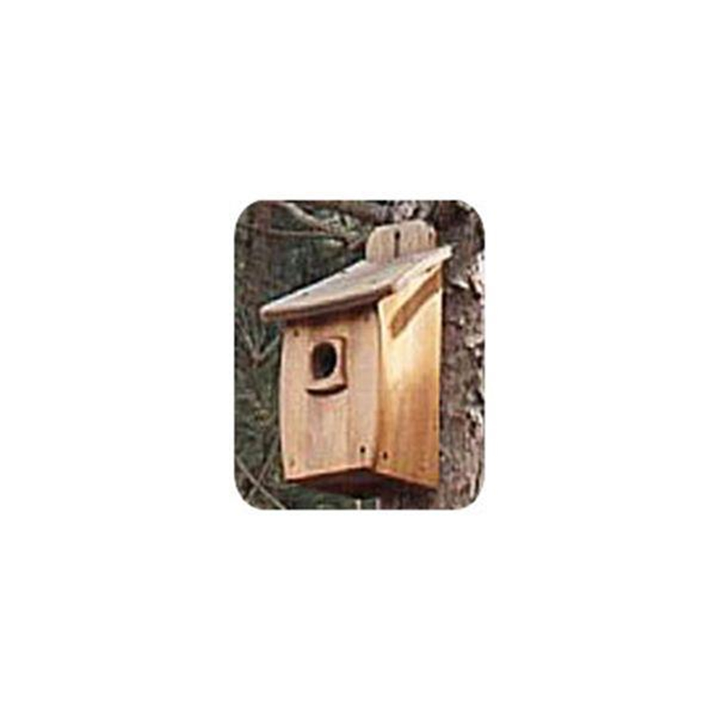 Woodworking Project Paper Plan to Build Extra Large Birdhouse
