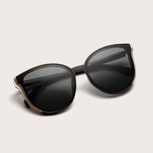 Cat Eye Acrylic Frame Sunglasses