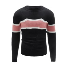 Men Color Block Ribbed Knit Sweater