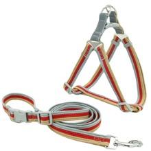 1pc Dog Striped Harness & 1pc Leash