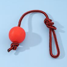 Dog Bouncy Ball With Colorblock Rope