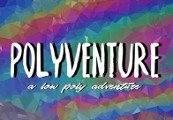 Polyventure Steam CD Key