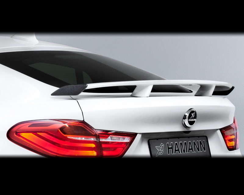 Hamann 10F16130-KPL Rear Wing with Carbon Fiber Side Flaps BMW X4 xDrive35i F26 15-16